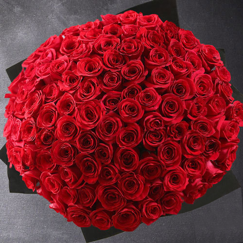 100 punast roosi