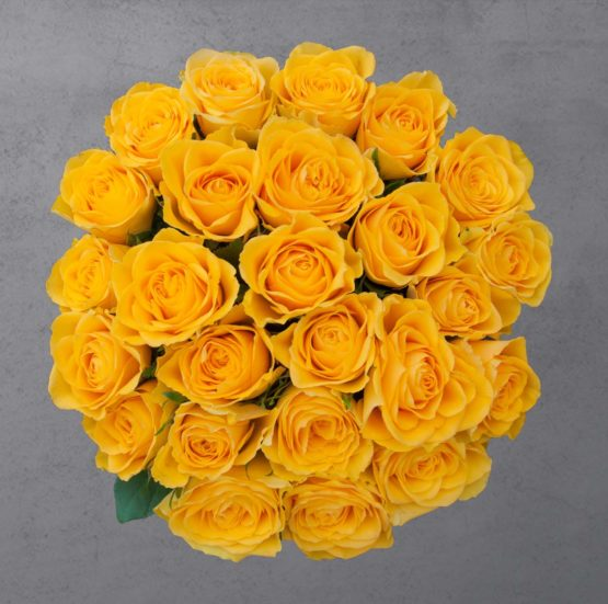 25 kollast roosi