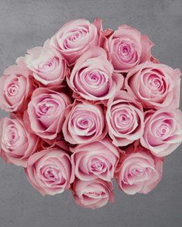 15 roosat roosi