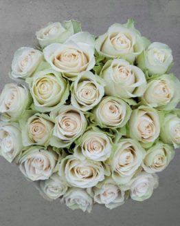 25 valget roosi